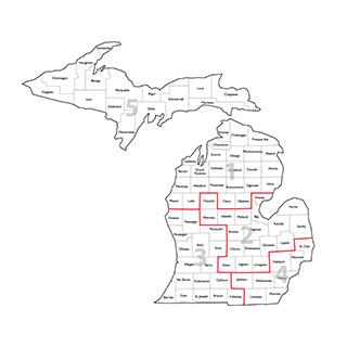 Region Representatives